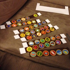 All of Russell's badges printed on cardstock. Cutting them out sucked.